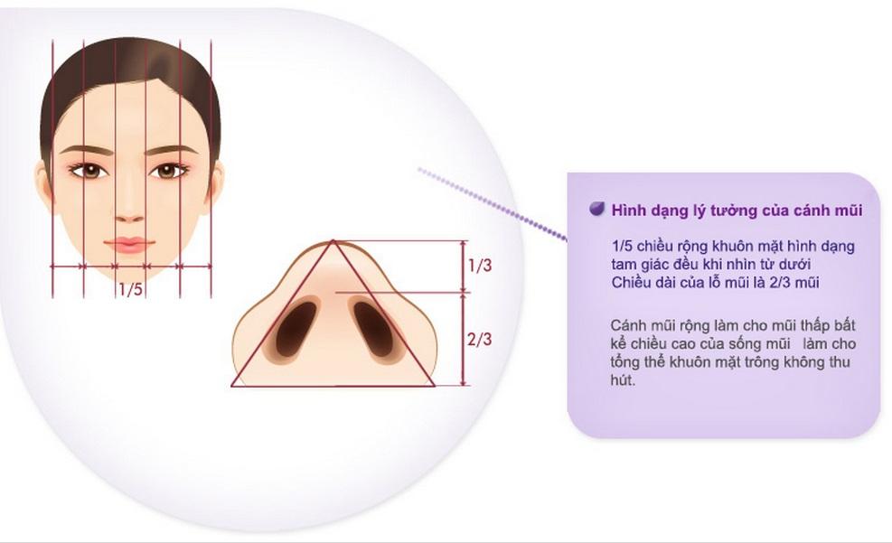 Phương pháp thu gọn cánh mũi giải pháp cho cánh mũi to