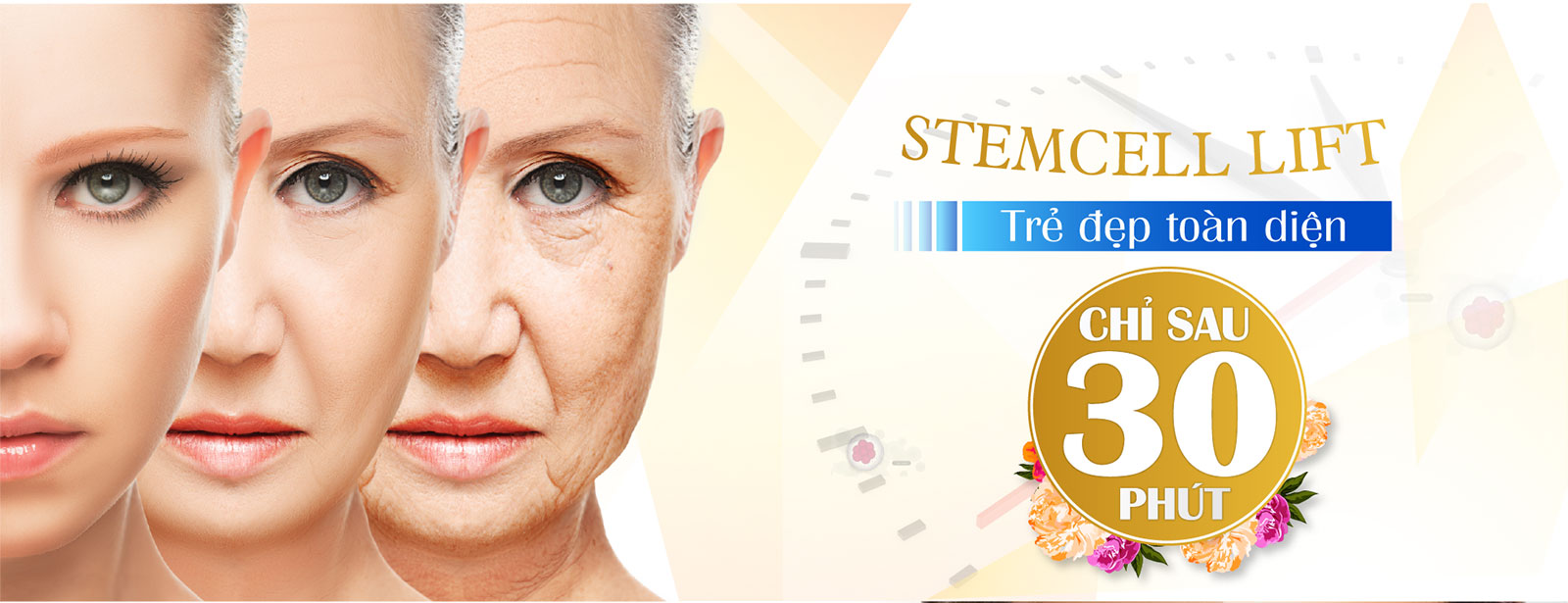 stem cell lift