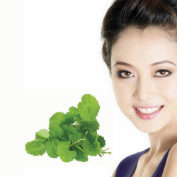 cách trị sẹo rỗ bằng rau má 1