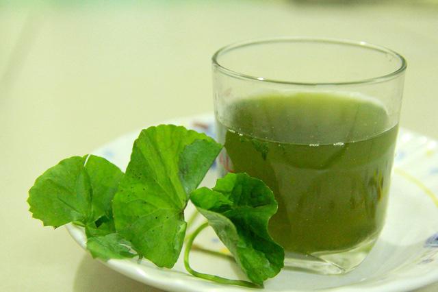 cách trị sẹo rỗ bằng rau má 8