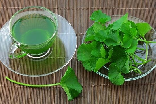 cách trị sẹo rỗ bằng rau má 9