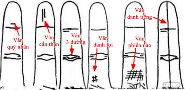 chỉ tay ngón áp út nói lên tính cách của bạn - bệnh viện á âu