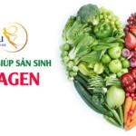 Các thực phẩm giúp kích thích sản sinh Collagen