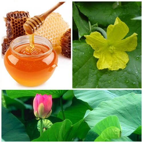 trị nám tàn nhang bằng mật ong 2