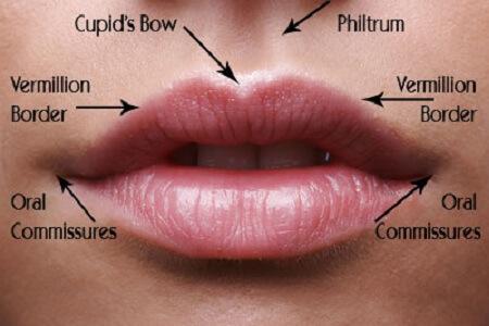 Phẫu thuật môi trái tim bao lâu thì lành