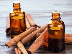 Tinh dầu quế giúp ngăn cản quá trình tích tụ mỡ