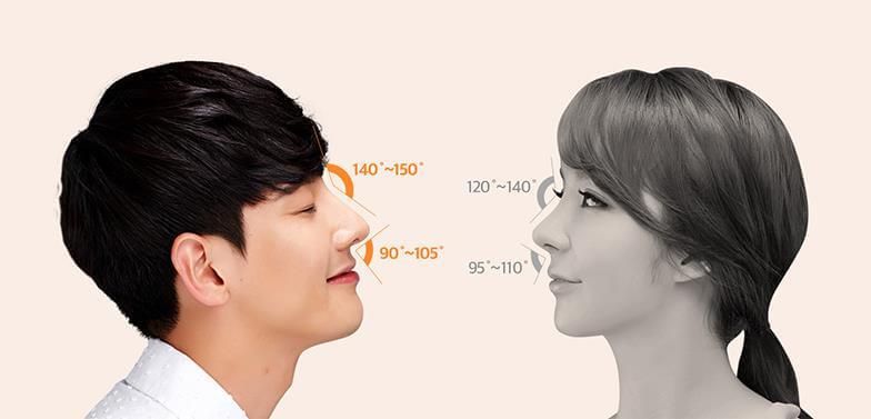 """""""Tỉ lệ vàng"""" giữa mũi của nam và nữ có sự khác biệt"""